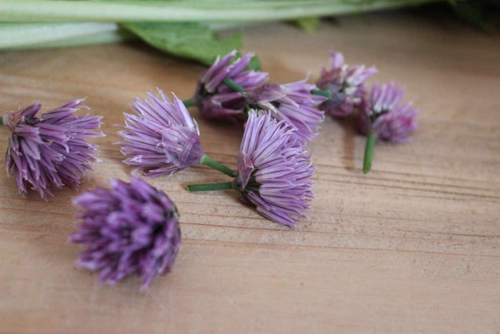 Mairübchen-Carpaccio mit Schnittlauchblütenvinaigrette