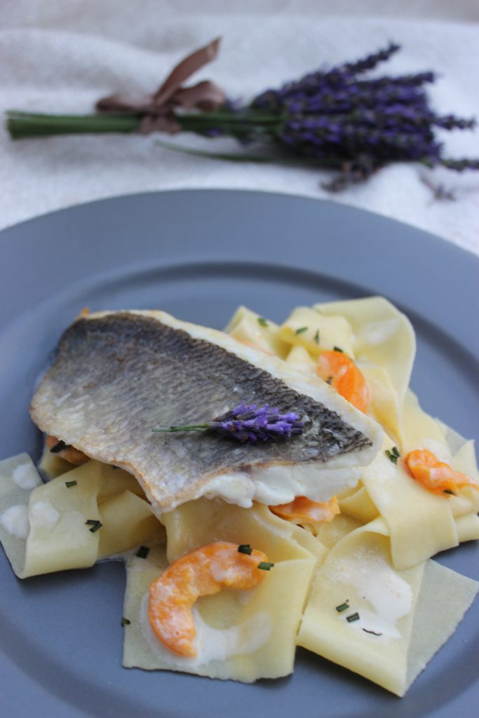 Dorade auf selbstgemachten Pappardelle mit Aprikosen-Lavendelsauce