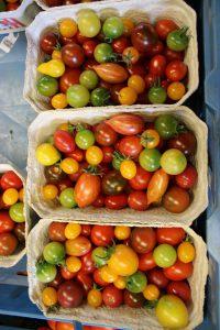 HofladenKlug_Tomaten4