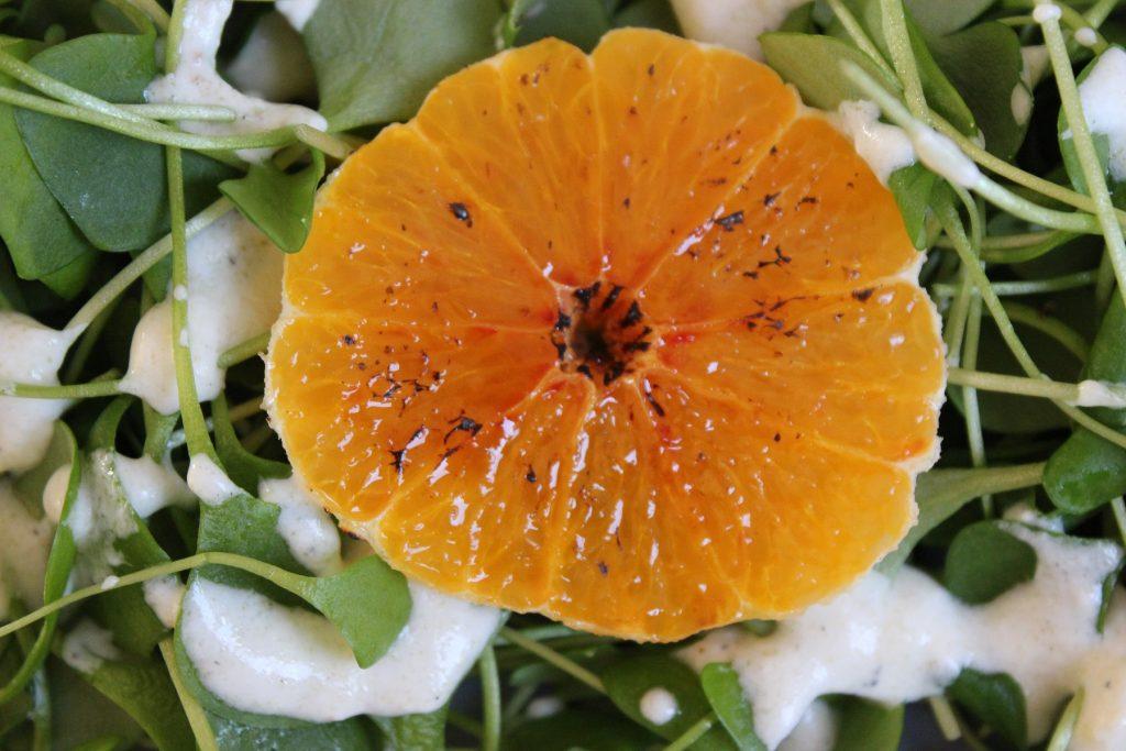 Postelein-Salat mit Joghurt-Kardamom-Dressing und karamellisierten Orangen
