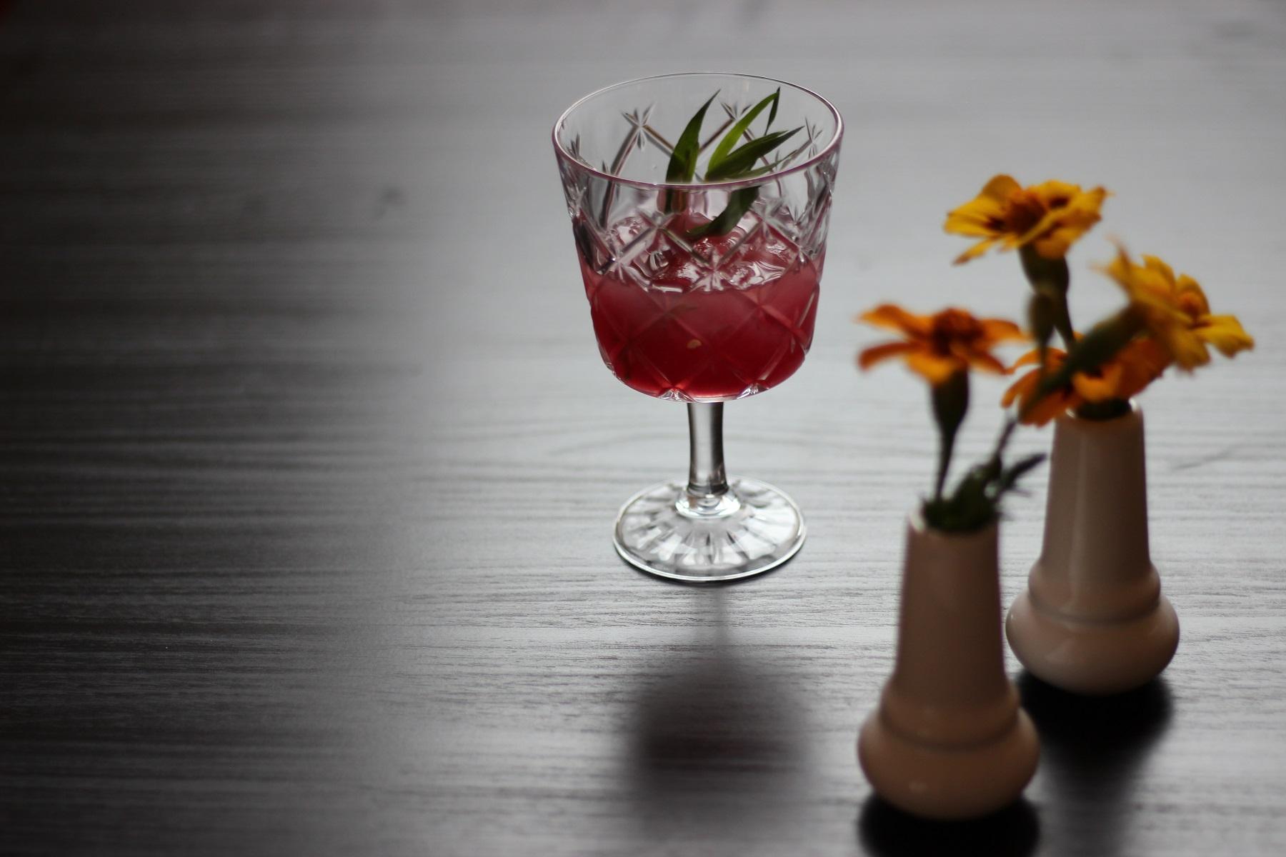 Das perfekte Dinner - Aperitif Cherry-Gin mit Estragon