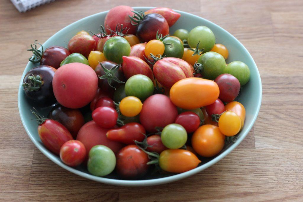 Brotsalat / Tomaten